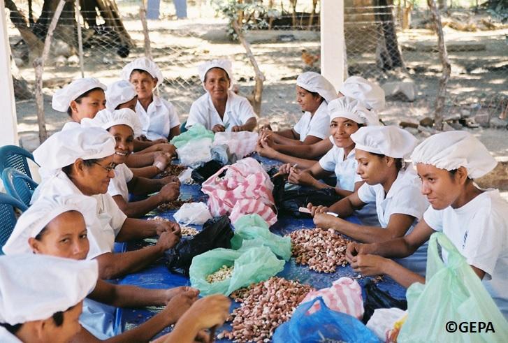 gepa fairtradecampany